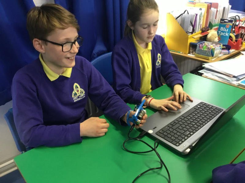 Programming Microbots in Mrs Galligans's P6 class