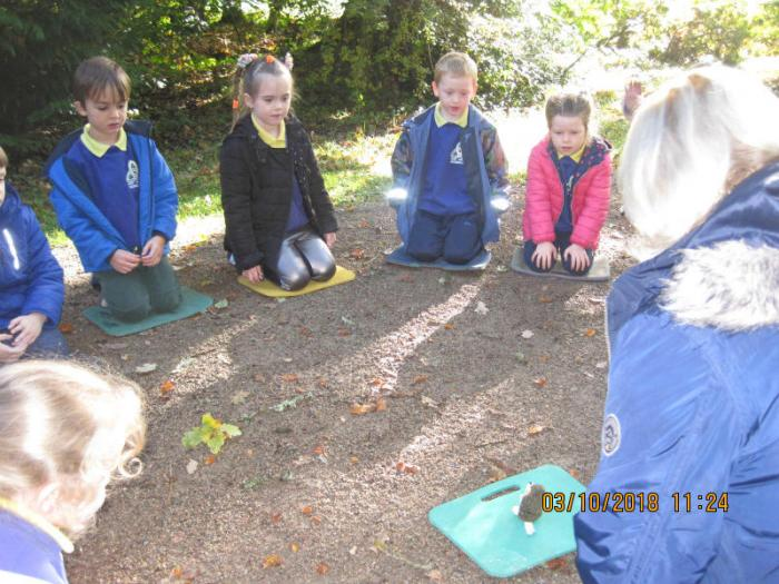 P1 trip to Florencecourt: learning about Autumn