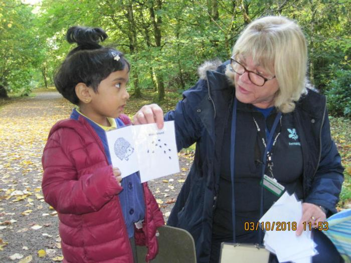 P1 Florencecourt trip: learning about Autumn and following Trusty't Trail